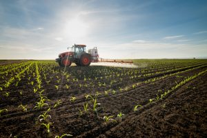 WHAT IS THE SAFEST AGRICULTURAL INVESTMENT IN NIGERIA?